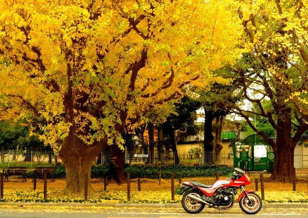 バイクの輸送費で最安値を目指すI-Lineでお見積もりを~料金が安いのに確かな仕事~